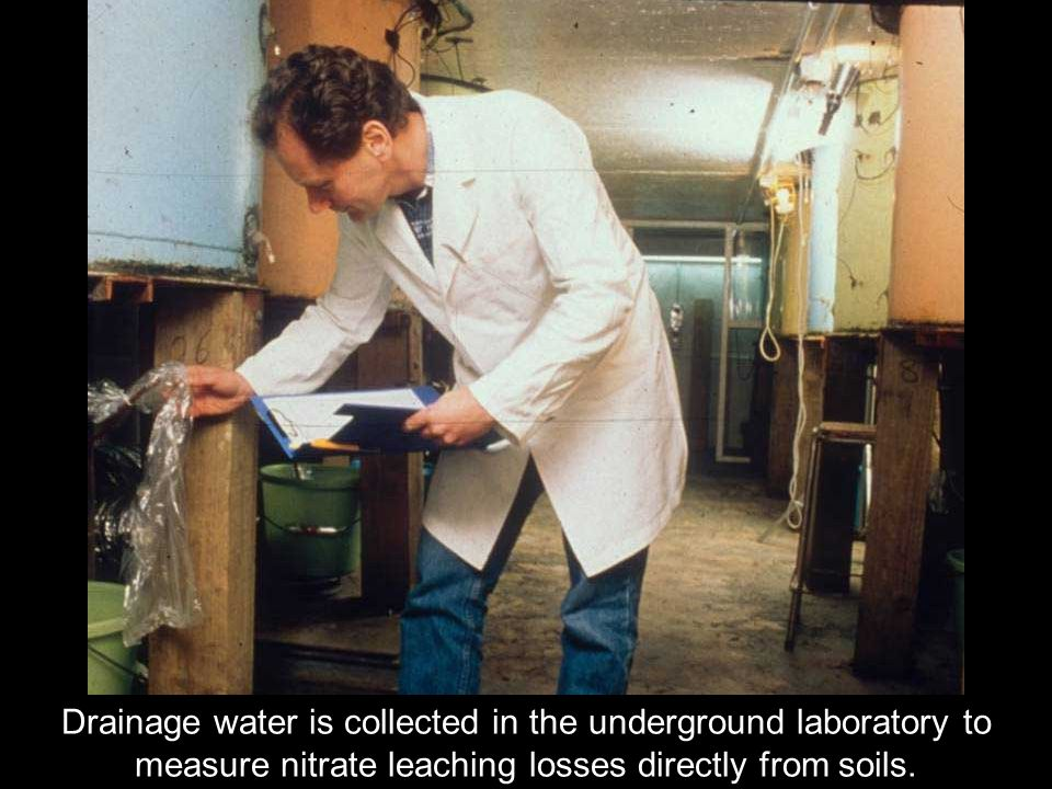 Drainage water is collected in the underground laboratory to measure nitrate leaching losses directly from soils.