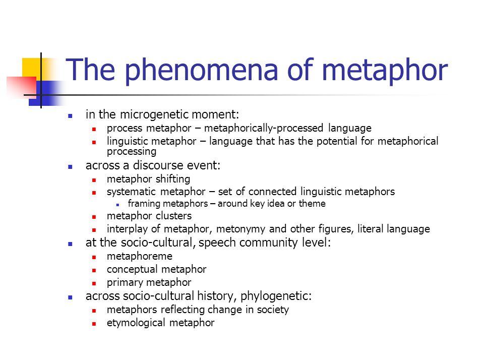 The phenomena of metaphor in the microgenetic moment: process metaphor – metaphorically-processed language linguistic metaphor – language that has the