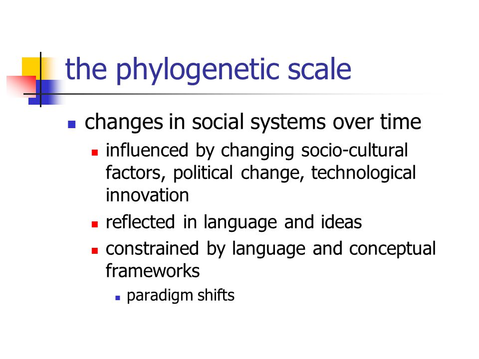 the phylogenetic scale changes in social systems over time influenced by changing socio-cultural factors, political change, technological innovation reflected in language and ideas constrained by language and conceptual frameworks paradigm shifts