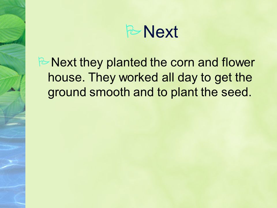 PNext PNext they planted the corn and flower house.