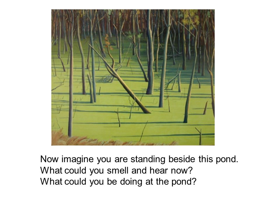 Now imagine you are standing beside this pond. What could you smell and hear now? What could you be doing at the pond?