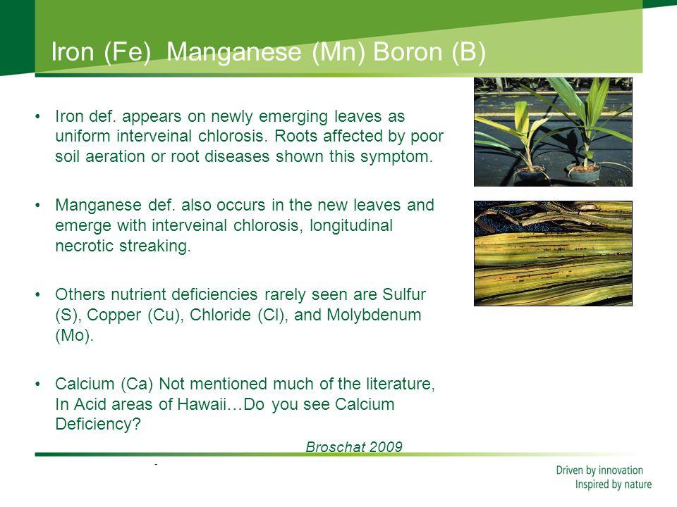Iron (Fe) Manganese (Mn) Boron (B) Iron def.