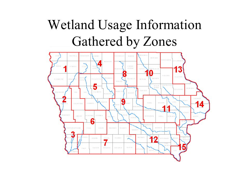 Wetland Usage Information Gathered by Zones