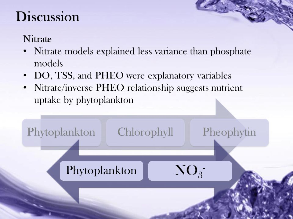 Powerpoint Templates Phytoplankton Chlorophyll Pheophytin Discussion Nitrate Nitrate models explained less variance than phosphate models DO, TSS, and PHEO were explanatory variables Nitrate/inverse PHEO relationship suggests nutrient uptake by phytoplankton Phytoplankton NO 3 -