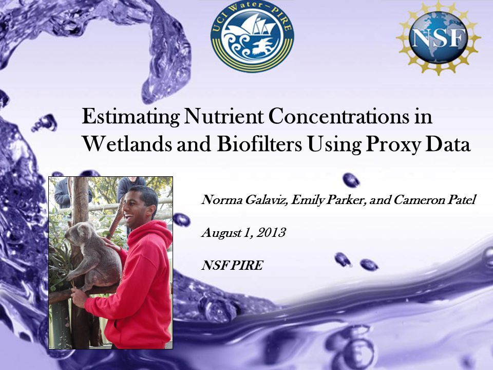 Powerpoint Templates Estimating Nutrient Concentrations in Wetlands and Biofilters Using Proxy Data Norma Galaviz, Emily Parker, and Cameron Patel August 1, 2013 NSF PIRE