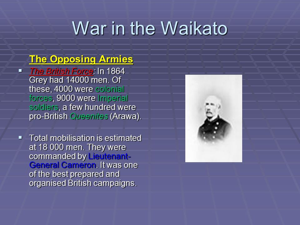 War in the Waikato The Opposing Armies  The British Force: In 1864 Grey had 14000 men.