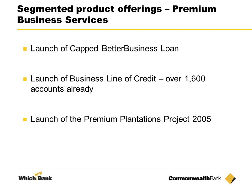 16 Segmented product offerings – Premium Business Services Launch of Capped BetterBusiness Loan Launch of Business Line of Credit – over 1,600 accounts already Launch of the Premium Plantations Project 2005