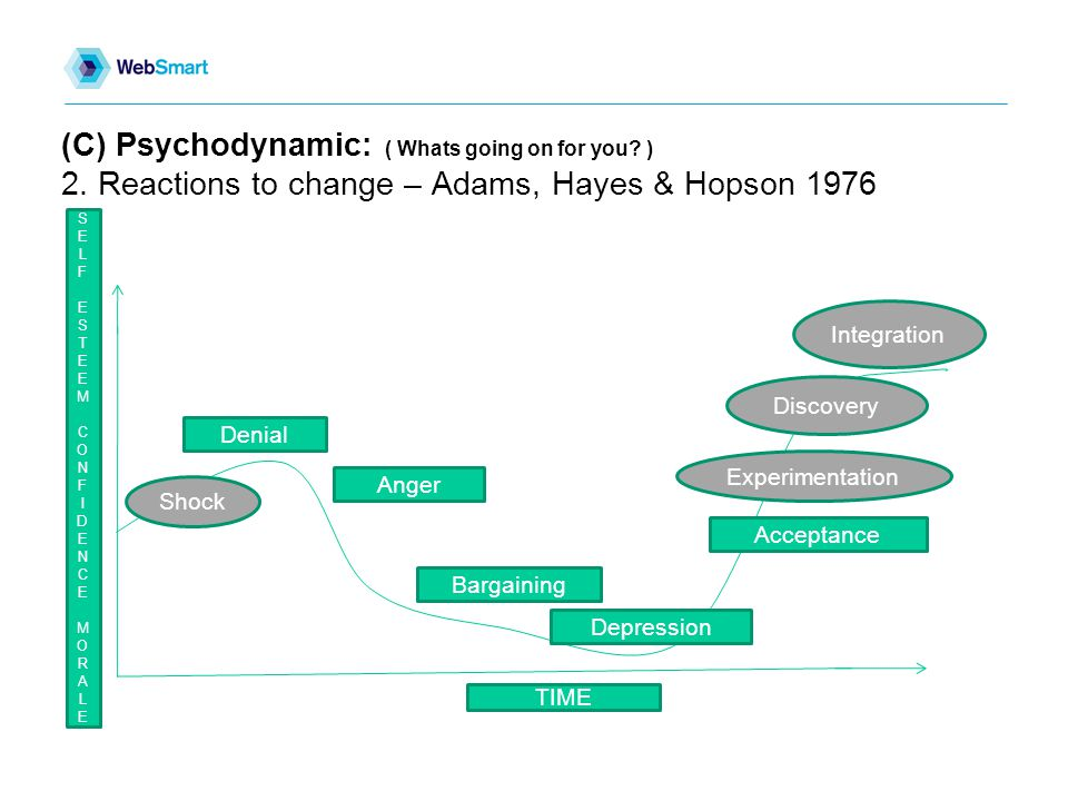 (C) Psychodynamic: ( Whats going on for you.) 2.