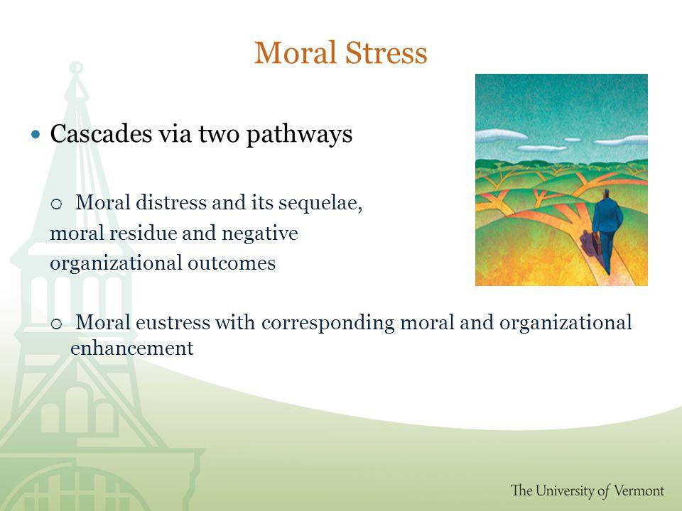 The Moral Cascade Theory  Theory created first ( Rambur, Vallett, Cohen,& Tarule, 2010)  Scholarly Influences include  Moral Development (Kohlberg, 1984; Gilligan, 1982)  Positive Psychology (Seligman & Csikszentmihalyi, 2000)  Virtuous Organizations (Cameron, 2003; Dutton, Glynn, & Spreitzer, 2006)  Stress (Selye, 1974; Csikszentmihalyi, 1990 )