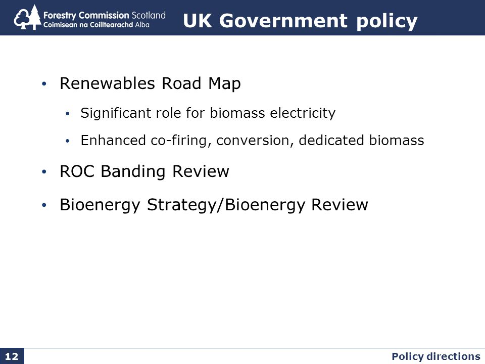 UK Government policy Renewables Road Map Significant role for biomass electricity Enhanced co-firing, conversion, dedicated biomass ROC Banding Review Bioenergy Strategy/Bioenergy Review Policy directions 12