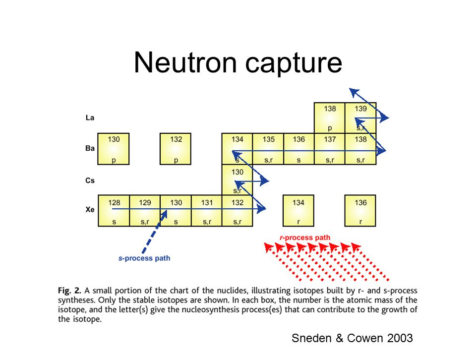 Neutron capture Sneden & Cowen 2003