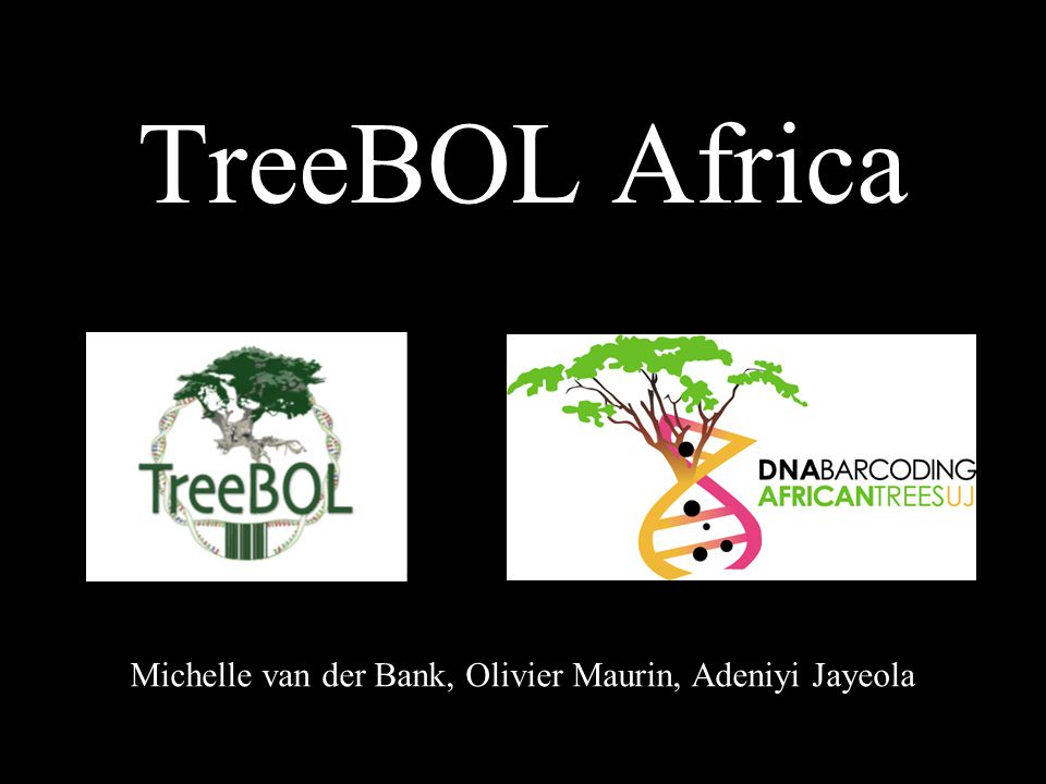 TreeBOL –Africa website Project presentation Information to collectors –Lists, –Standard of the data for easy merging –Protocols News Press release Contacts details of associates and collaborators