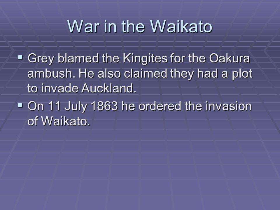 War in the Waikato  Grey blamed the Kingites for the Oakura ambush.