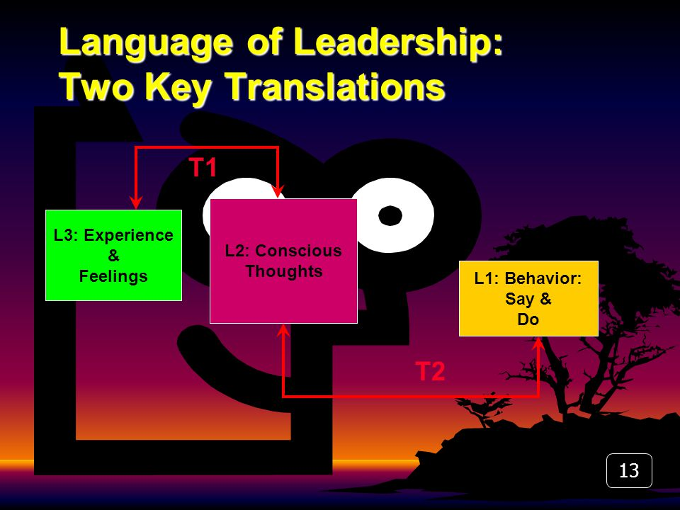 Language of Leadership: Two Key Translations L3: Experience & Feelings L1: Behavior: Say & Do L2: Conscious Thoughts T1 T2 13