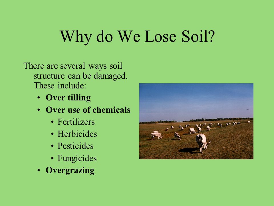 Why do We Lose Soil. There are several ways soil structure can be damaged.
