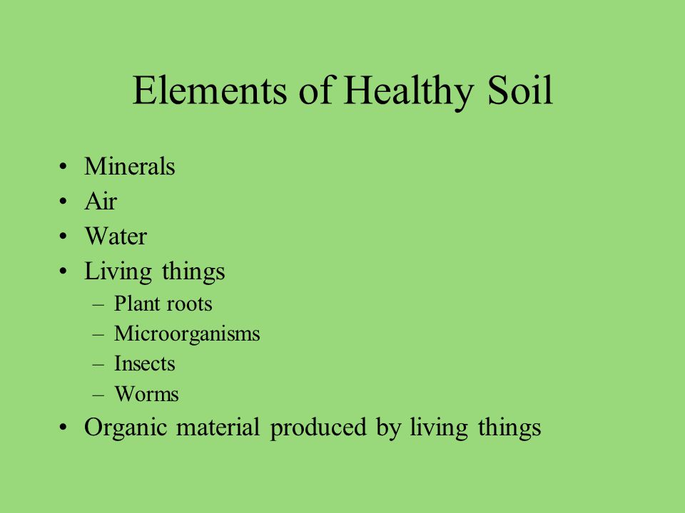 Elements of Healthy Soil Minerals Air Water Living things –Plant roots –Microorganisms –Insects –Worms Organic material produced by living things