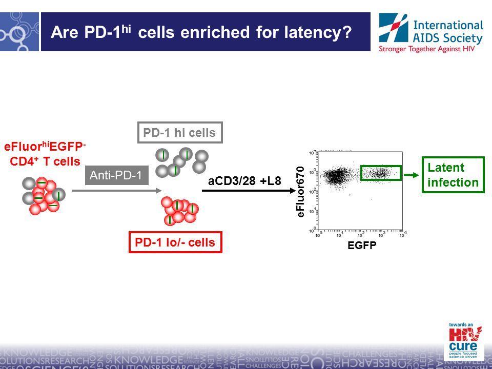 Are PD-1 hi cells enriched for latency.
