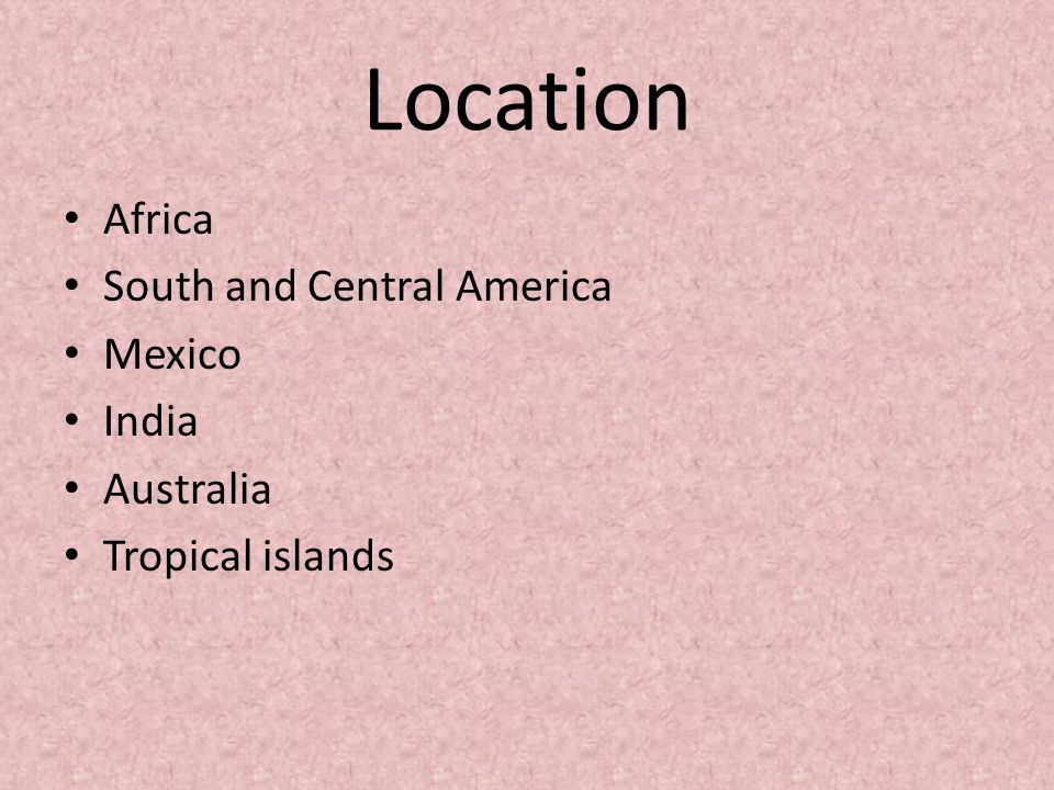 Location Africa South and Central America Mexico India Australia Tropical islands