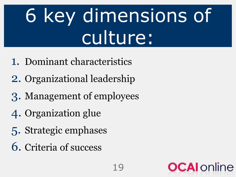 19 6 key dimensions of culture: 1. Dominant characteristics 2. Organizational leadership 3. Management of employees 4. Organization glue 5. Strategic