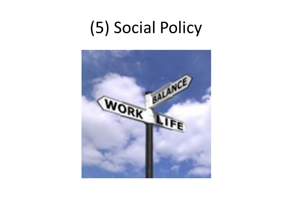 (5) Social Policy