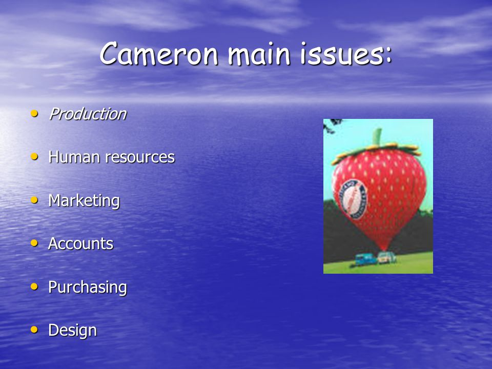 Cameron main issues: Production Production Human resources Human resources Marketing Marketing Accounts Accounts Purchasing Purchasing Design Design