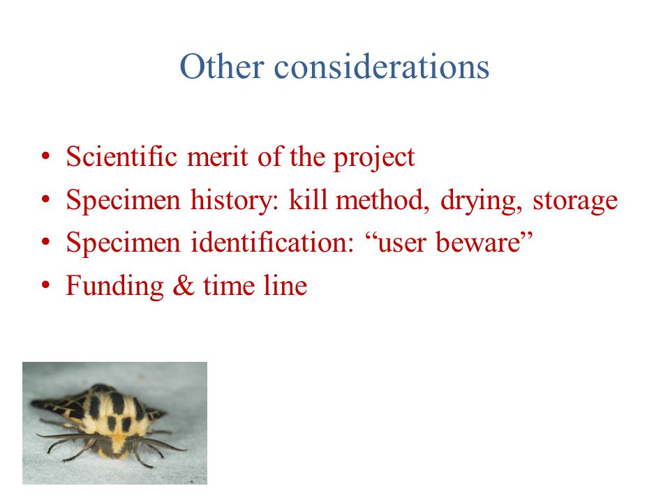 "Other considerations Scientific merit of the project Specimen history: kill method, drying, storage Specimen identification: ""user beware"" Funding & t"