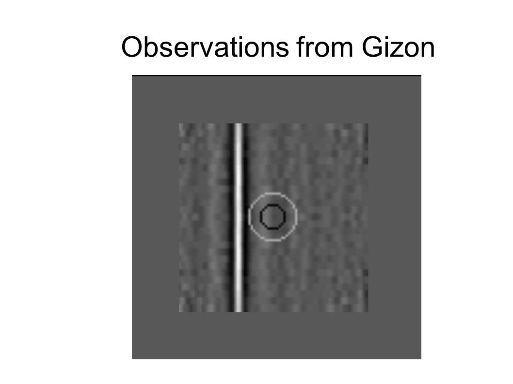 Observations from Gizon