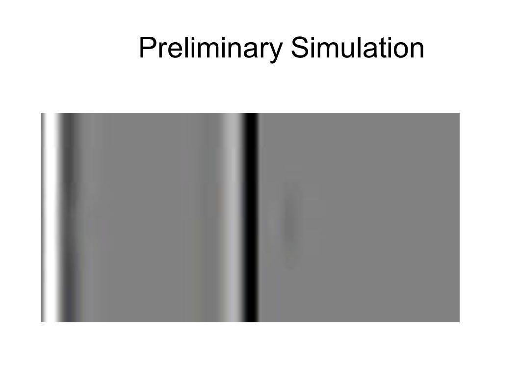 Preliminary Simulation