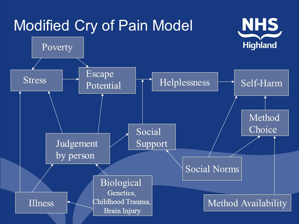 Modified Cry of Pain Model Judgement by person Escape Potential Stress Helplessness Self-Harm Social Support Illness Biological Genetics, Childhood Trauma, Brain Injury Social Norms Method Availability Method Choice Poverty