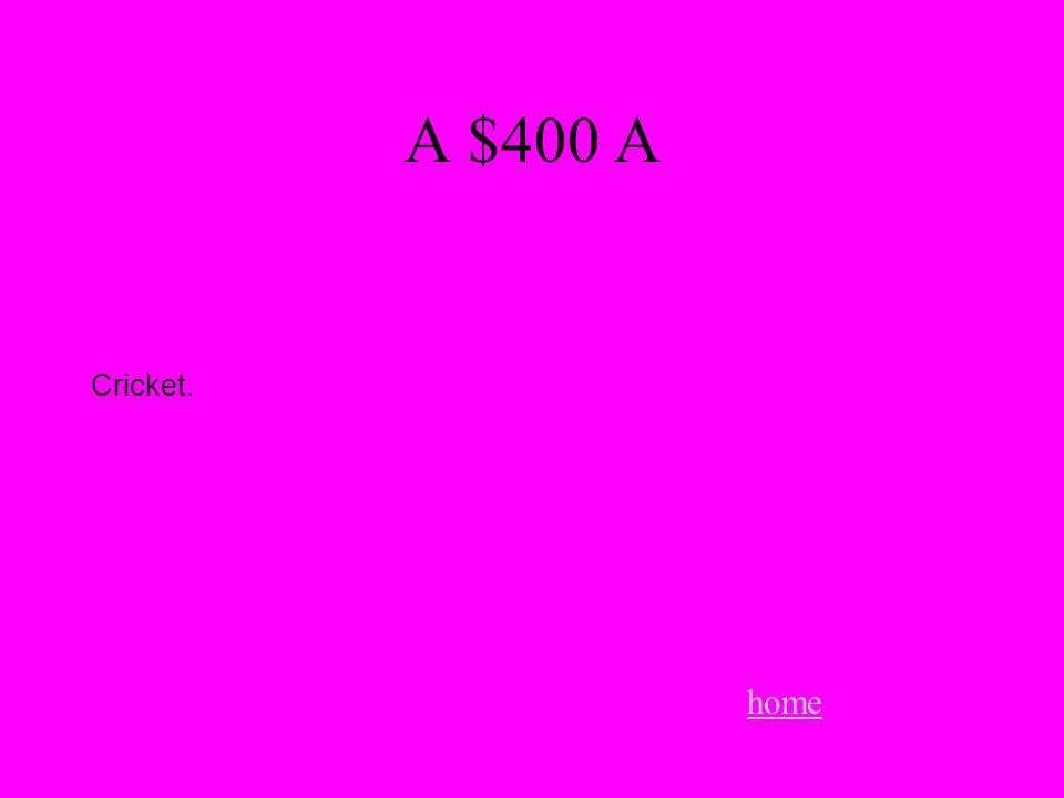 A $400 A home Cricket.