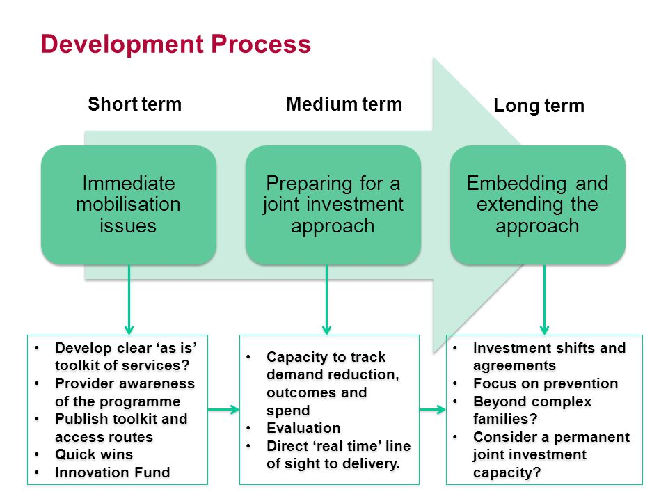 Development Process Immediate mobilisation issues Preparing for a joint investment approach Embedding and extending the approach Short termMedium term