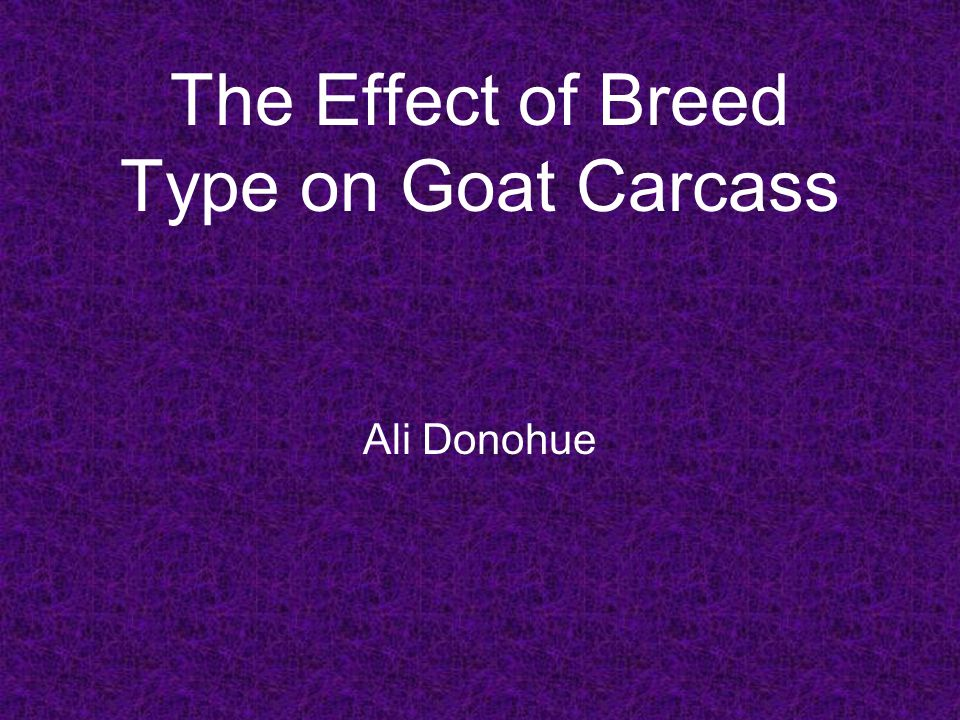 The Effect of Breed Type on Goat Carcass Ali Donohue