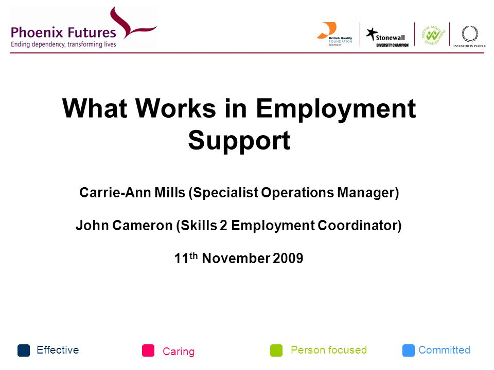 CommittedEffective Caring Person focused What Works in Employment Support Carrie-Ann Mills (Specialist Operations Manager) John Cameron (Skills 2 Employment Coordinator) 11 th November 2009