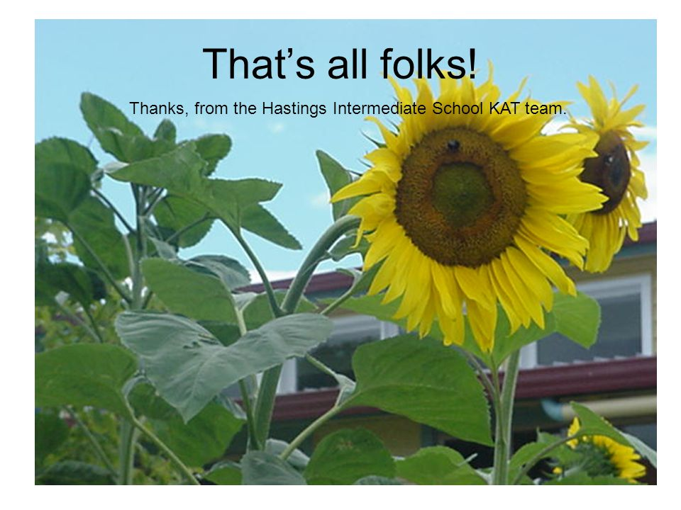 That's all folks! Thanks, from the Hastings Intermediate School KAT team.