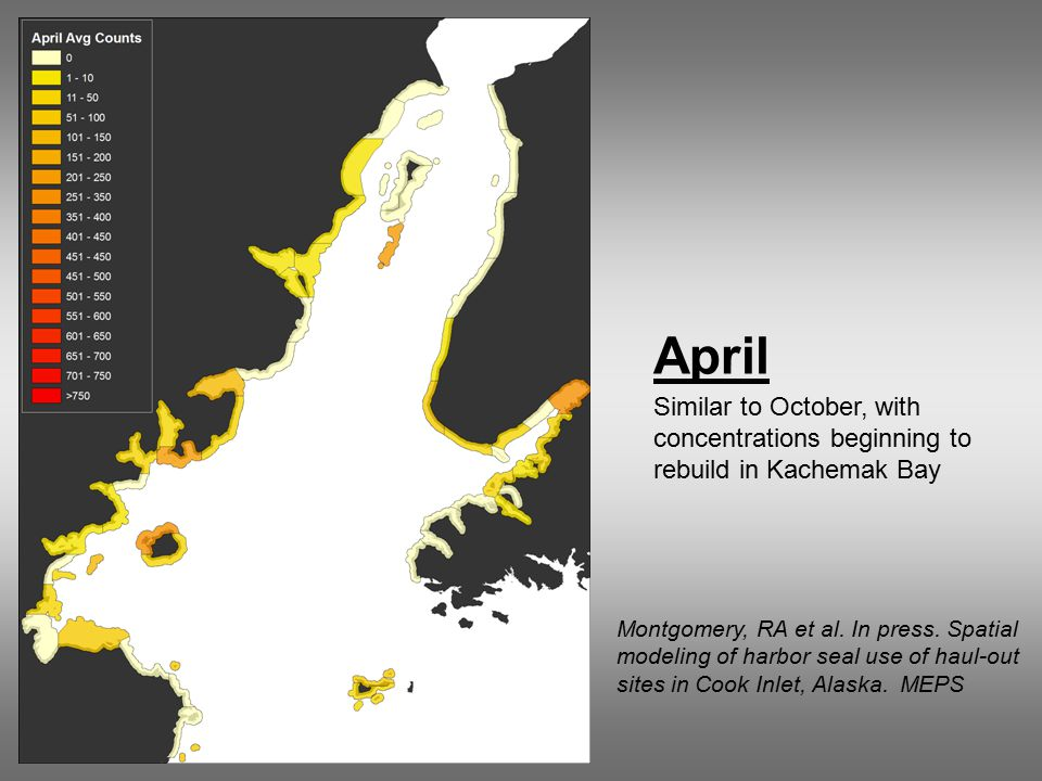 April Similar to October, with concentrations beginning to rebuild in Kachemak Bay Montgomery, RA et al.