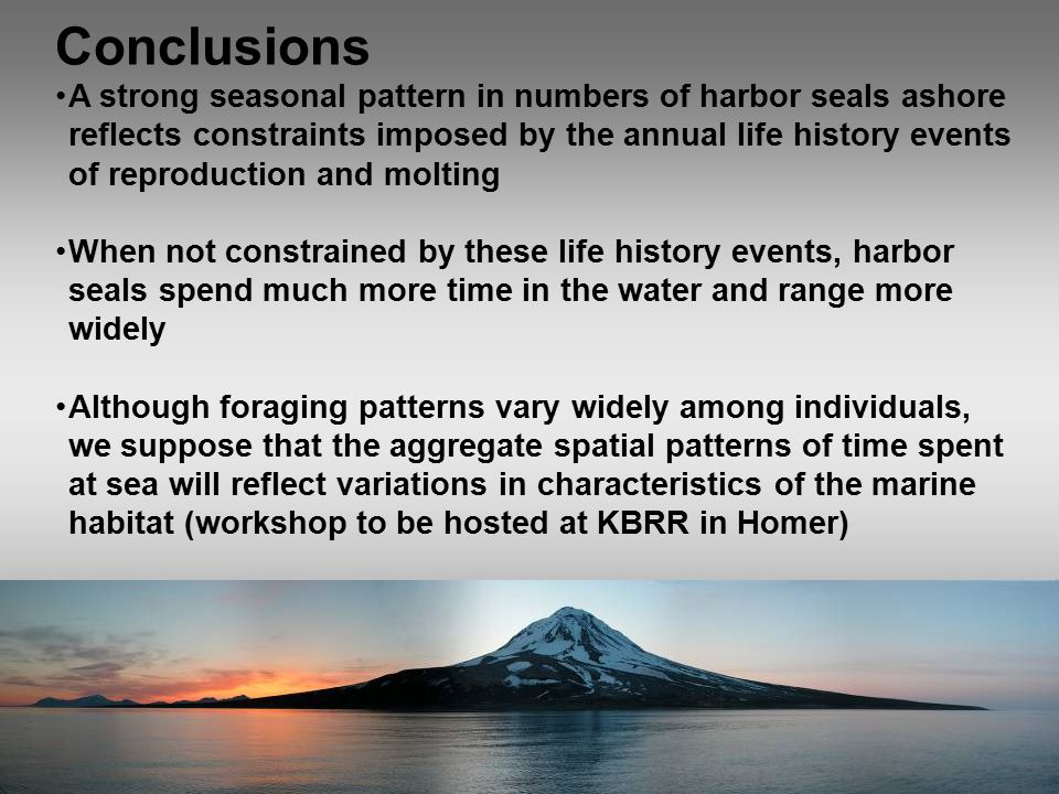 Conclusions A strong seasonal pattern in numbers of harbor seals ashore reflects constraints imposed by the annual life history events of reproduction and molting When not constrained by these life history events, harbor seals spend much more time in the water and range more widely Although foraging patterns vary widely among individuals, we suppose that the aggregate spatial patterns of time spent at sea will reflect variations in characteristics of the marine habitat (workshop to be hosted at KBRR in Homer)