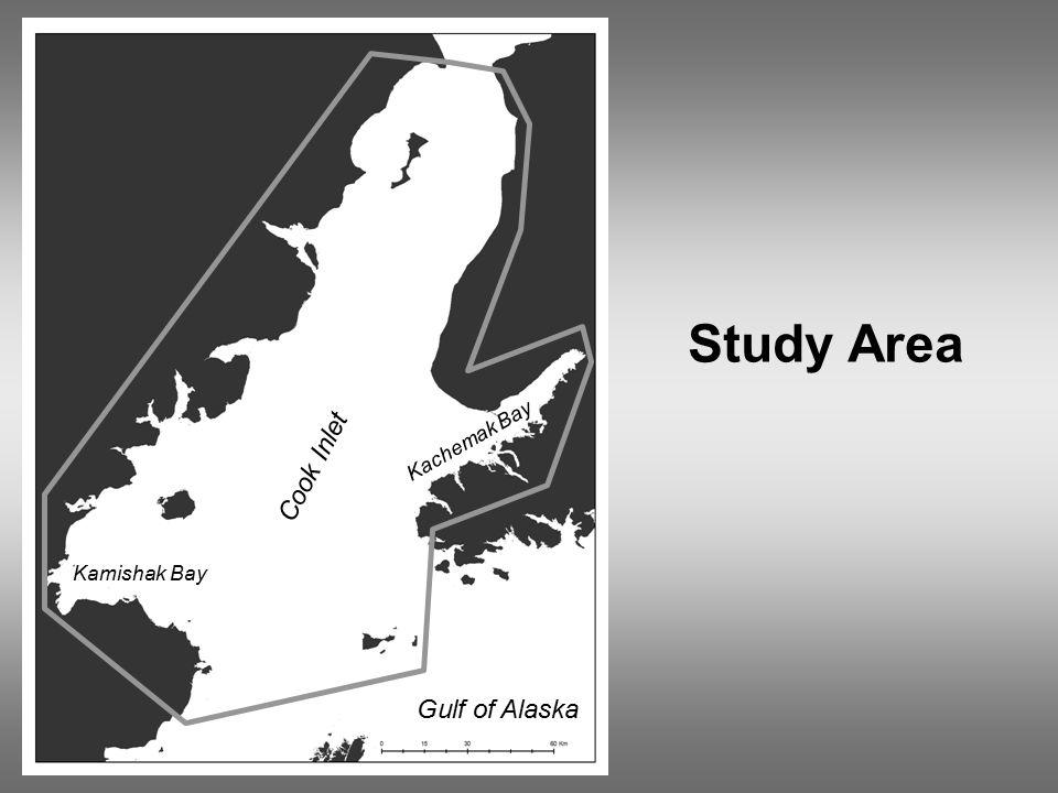 Cook Inlet Study Area Gulf of Alaska Kachemak Bay Kamishak Bay