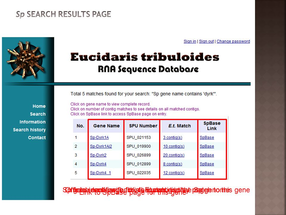 Sp gene name with link to match display pageOfficial identifier for this sequence in the Sp genomeLink to result page for all Et contigs that match to this gene Link to SpBase page for this gene