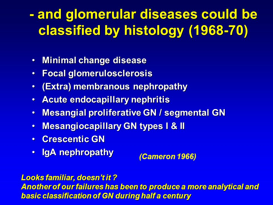 - and glomerular diseases could be classified by histology (1968-70) Minimal change diseaseMinimal change disease Focal glomerulosclerosisFocal glomerulosclerosis (Extra) membranous nephropathy(Extra) membranous nephropathy Acute endocapillary nephritisAcute endocapillary nephritis Mesangial proliferative GN / segmental GNMesangial proliferative GN / segmental GN Mesangiocapillary GN types I & IIMesangiocapillary GN types I & II Crescentic GNCrescentic GN IgA nephropathyIgA nephropathy (Cameron 1966) Looks familiar, doesn't it .