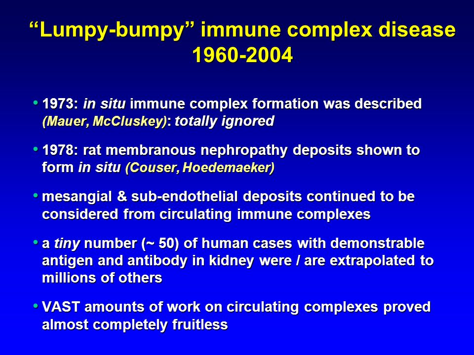 Lumpy-bumpy immune complex disease 1960-2004 1973: in situ immune complex formation was described (Mauer, McCluskey) : totally ignored 1973: in situ immune complex formation was described (Mauer, McCluskey) : totally ignored 1978: rat membranous nephropathy deposits shown to form in situ (Couser, Hoedemaeker) 1978: rat membranous nephropathy deposits shown to form in situ (Couser, Hoedemaeker) mesangial & sub-endothelial deposits continued to be considered from circulating immune complexes mesangial & sub-endothelial deposits continued to be considered from circulating immune complexes a tiny number (~ 50) of human cases with demonstrable antigen and antibody in kidney were / are extrapolated to millions of others a tiny number (~ 50) of human cases with demonstrable antigen and antibody in kidney were / are extrapolated to millions of others VAST amounts of work on circulating complexes proved almost completely fruitless VAST amounts of work on circulating complexes proved almost completely fruitless