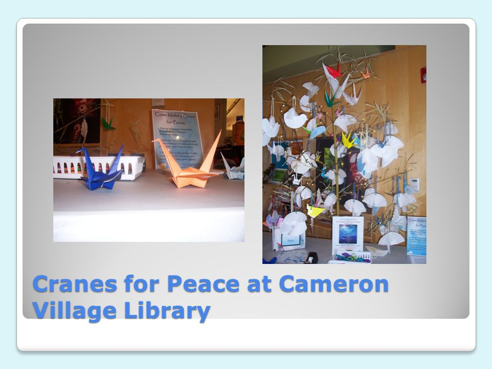 Teens for Peace at the Cameron Village Library