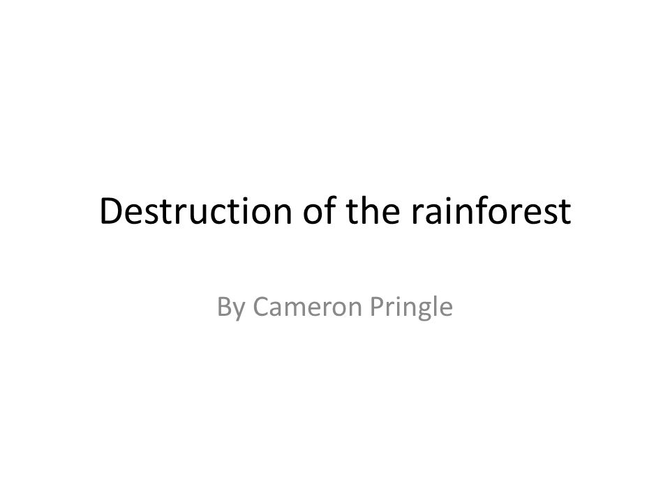 Destruction of the rainforest By Cameron Pringle