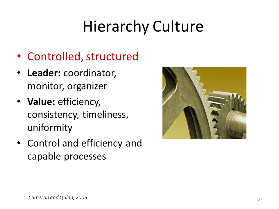 Hierarchy Culture Controlled, structured Leader: coordinator, monitor, organizer Value: efficiency, consistency, timeliness, uniformity Control and ef