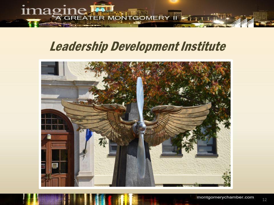 Leadership Development Institute 12