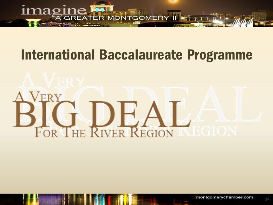 International Baccalaureate Programme 14