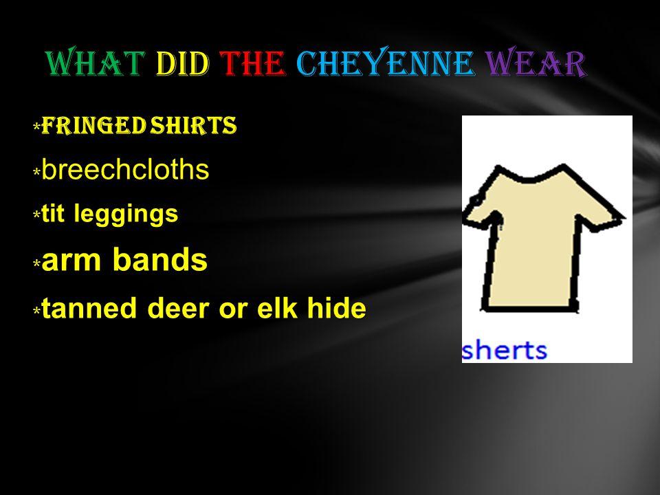 fringed shirts * fringed shirts * breechcloths tit leggings * tit leggings arm bands * arm bands tanned deer or elk hide * tanned deer or elk hide What did the Cheyenne wear