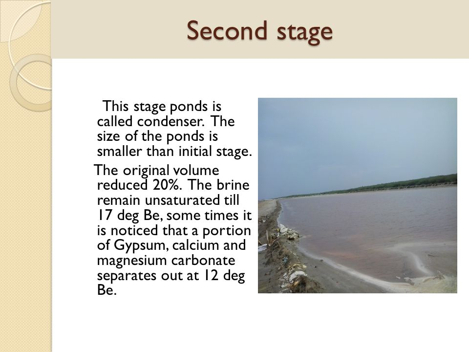 Second stage This stage ponds is called condenser. The size of the ponds is smaller than initial stage. The original volume reduced 20%. The brine rem