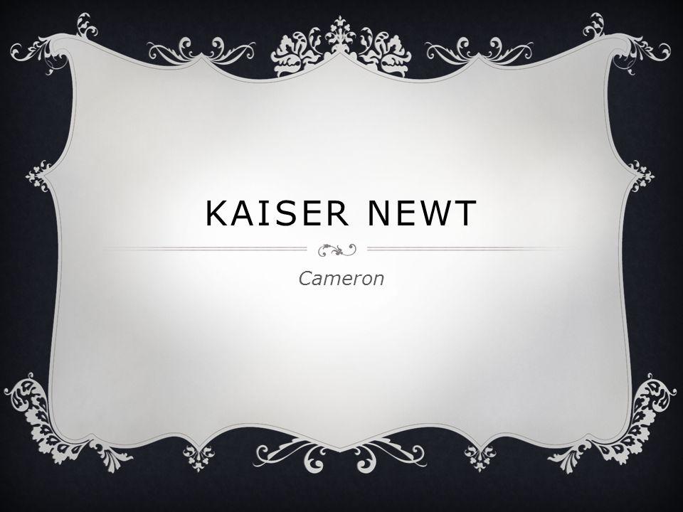 KAISER NEWT Cameron