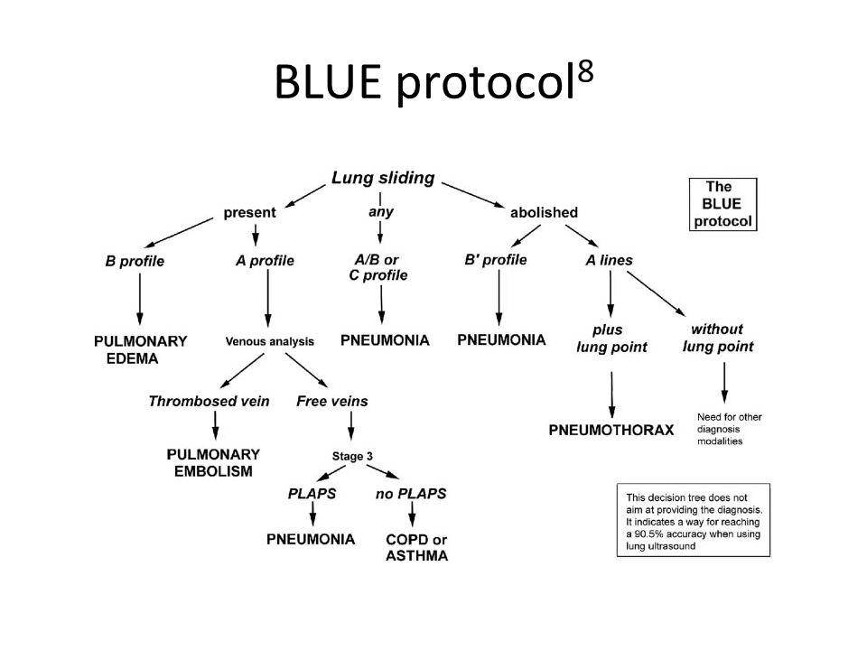 BLUE protocol 8