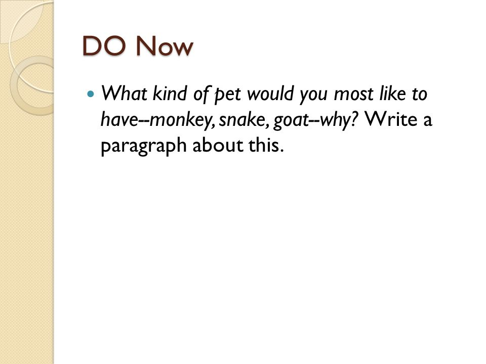 DO Now What kind of pet would you most like to have--monkey, snake, goat--why.
